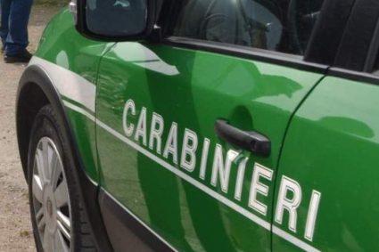 Piazzolla di Nola: Sicurezza ambientale. Carabinieri denunciano 2 persone. Sequestrata un'area di 4mila metri quadrati